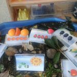 Kaleidoscope Nursery, Drighlington