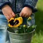 Why you should create a sensory garden
